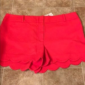 NWT Loft scalloped hem shorts
